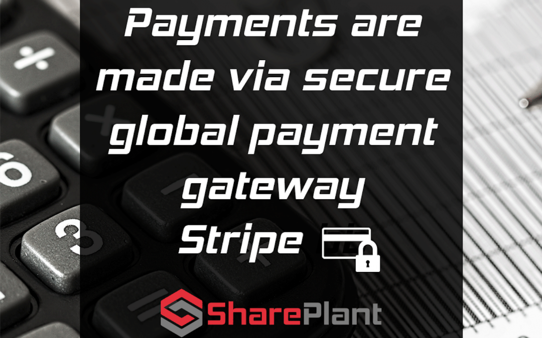 Your payments and data are safe!